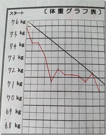 -7.3キロS様グラフ